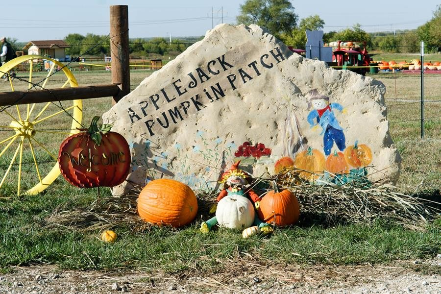 Coupon For Applejack Pumpkin Patch Discount Coupon Planet Fitness
